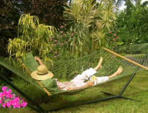 Maui Cottage: The hamock