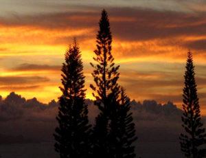 Maui Cottage Sunsets - Spectacular