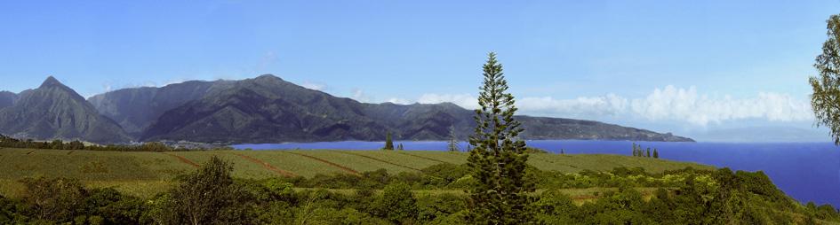 Maui Vacation Rental Panorama